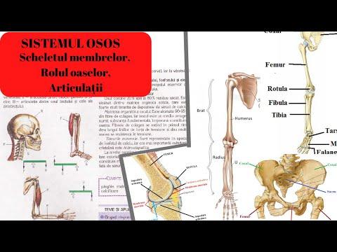 articulațiile rănesc cu presiune tratament de distrugere a genunchiului