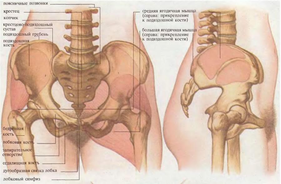 dureri la nivelul articulației sacroiliace rigiditatea articulațiilor degetelor tratamentului mâinilor