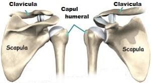 inflamația cartilajului la nivelul piciorului