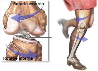 costul articulației genunchiului