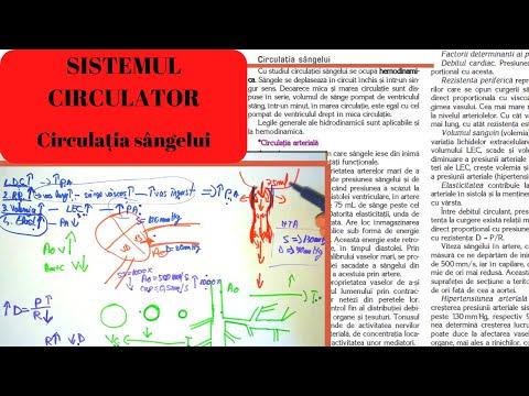 articulațiile rănite la bărbați cauza durerii în articulația șoldului din dreapta
