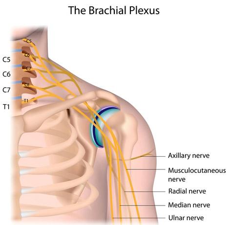 calmante pentru osteochondroza spatelui