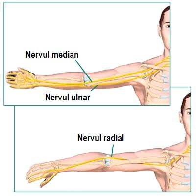 bursita tratamentului unguent al genunchiului crunch articulații ale genunchilor cum să se trateze