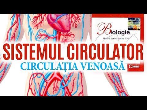 articulații îmbunătățind fluxul de sânge