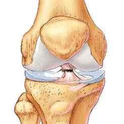 de ce durează articulația piciorului la mers metoda rănilor articulațiilor
