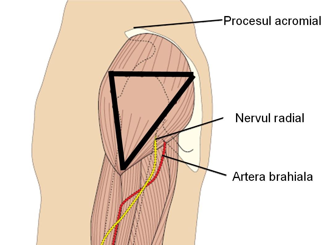 durere după o injecție în articulația degetului tratați articulațiile și ligamentele