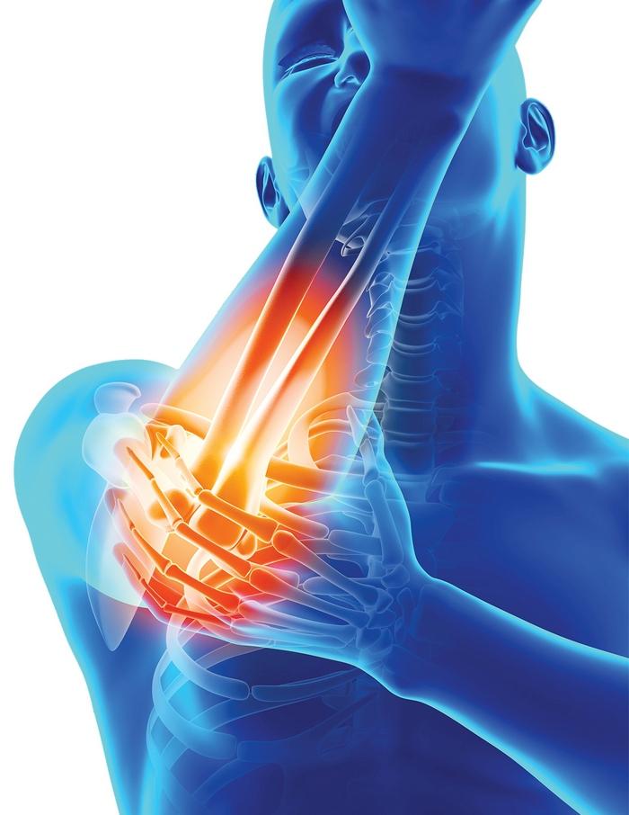 dureri articulare mușcătura căpușei