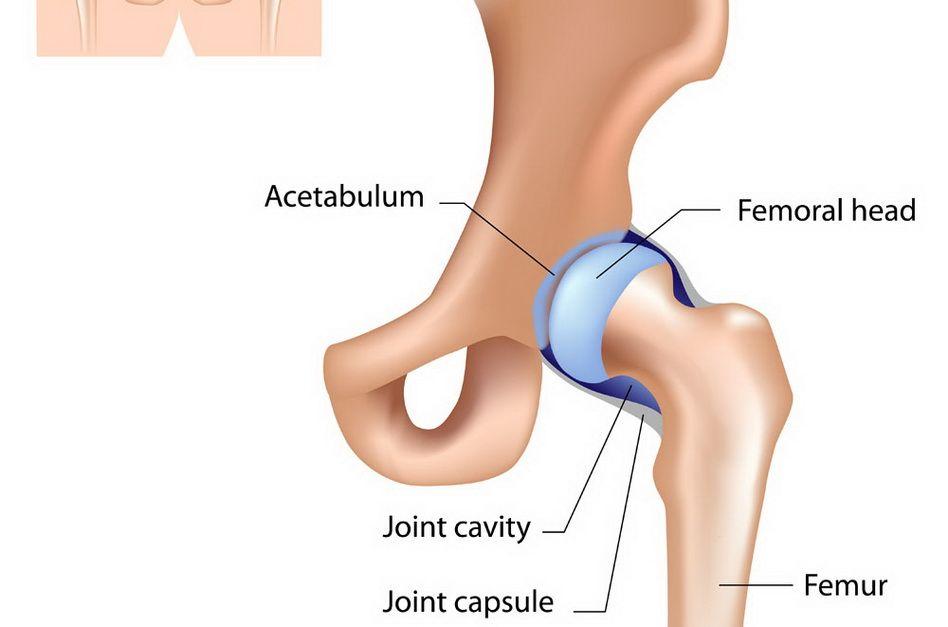 dureri la genunchi și articulația șoldului