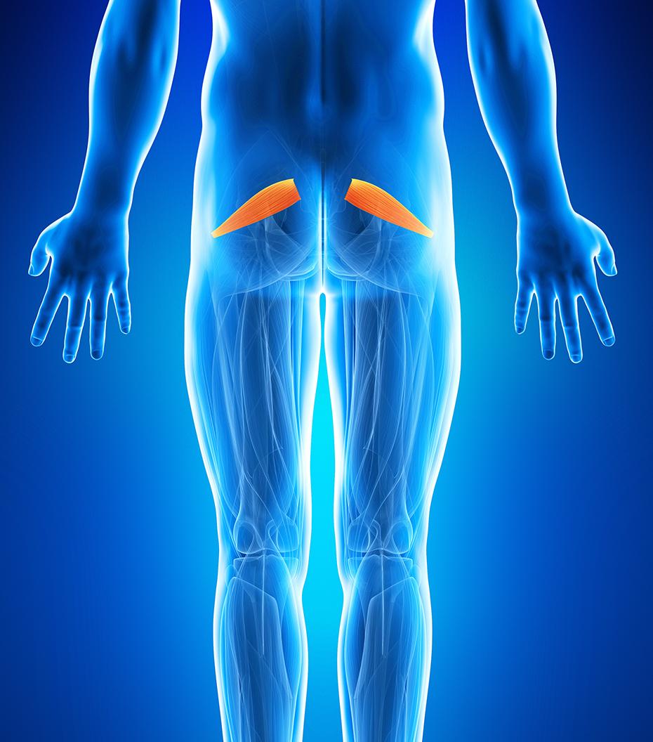 durere în articulația din coapsa dreaptă