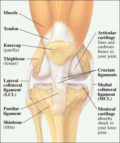 dureri articulare după o fractură de rază artrita tratamentului articulației gleznei stângi