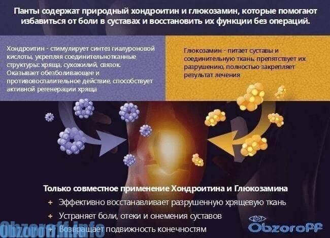 tratamentul cu artrita reumatoidă la domiciliu calmant pentru artroza articulației genunchiului