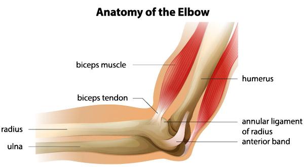 tratament cu artroza călărie bursita verticală a tratamentului articulației șoldului