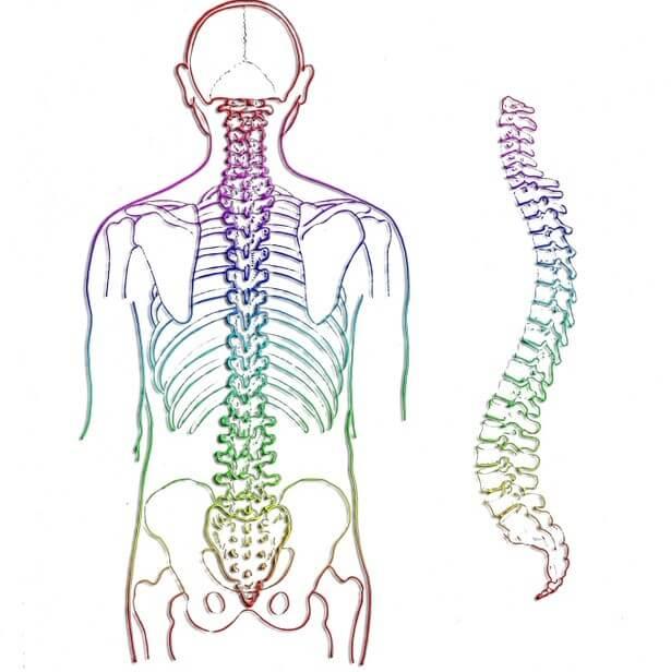 articulații sacroiliace de ce doare